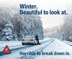 Bosch winter